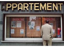 Discriminatie huurmarkt - Reacties minderhedenforum en beroepsvereniging makelaars