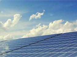 Bond Beter Leefmilieu en WWF willen nieuw plan om CO2-uitstoot effectief terug te dringen